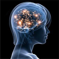 Засоби поліпшення пам'яті